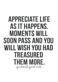 Appreciate Life Quotes Impressive Quotes About Appreciating Life Ostravauradprace