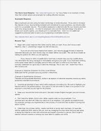 Fresh Resume Opening Statement Examples Pdf Format Functional Resume