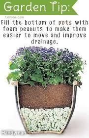 Small Picture Best 20 Best garden ideas on Pinterest Gardening Growing