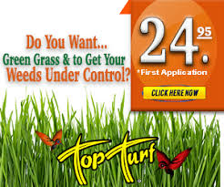 lawncare ad ad roll lawn care plain green grass 300 x 250 fert top turf