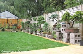 bonsai gardens. a large bonsai collection in greenford, england gardens
