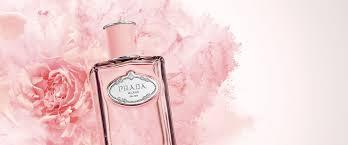 Les Infusions - <b>Rose</b> | PRADA