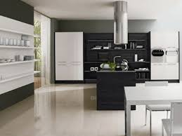 contemporary kitchen colors. Enchanting Modern Kitchen Color Ideas Contemporary Colors D Allhomelife T