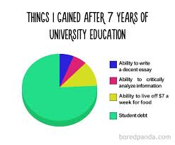 Make Me A Pie Chart Things I Have Gained After 7 Years Of University Education