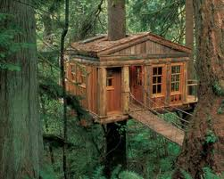 treehouse masters treehouse point. A Lodging At Treehouse Point In Washington State. Pete Nelson\u0027s, From Master. Masters