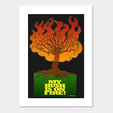 Burning Bush Size Chart Burning Bush