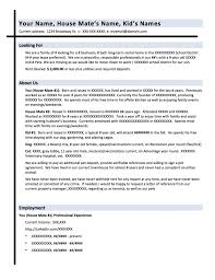 Write A Resume Template Adorable Perfect It Resume Templates Memberpro Co How To Write Good Objective