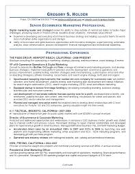 Ecommerce Analyst Sample Resume Sample Resume For Ecommerce Operations Manager Danayaus 18
