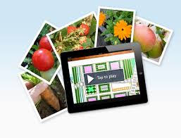 Small Picture Garden Plan Pro the leading Garden Planner app for iPad and iPhone