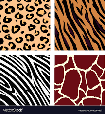 Animal Patterns Delectable Animal Patterns Royalty Free Vector Image VectorStock
