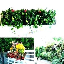 wall planters indoor nz mounted plant pots mount planter outdoor hanging outdo