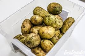 Озеленение картофеля ХитАгро ru БелБульба