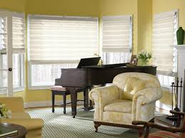 Living Room Window Blinds Design