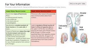 for your information this slide is extra from dr sanaa to diffeiate between upper and