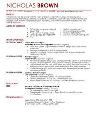 40 job winning web developer resume samples vinodomia - Web Designer Resume  Samples