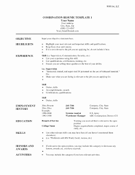 14 Best Of Combination Resume Template Word Resume Sample