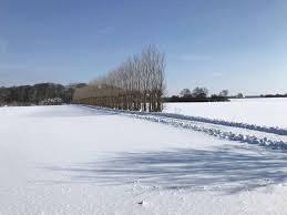 Knuthenlundlolland ökologischer Bauernhof Wie Aus Dem