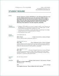 A Simple Resume Example 7 Best Basic Resume Examples Images On
