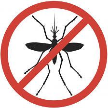 """Résultat de recherche d'images pour """"protection contre les moustiques"""""""