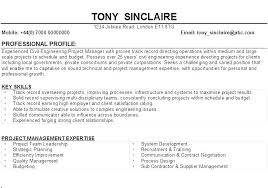 Professional Profile In Resumes Example Of A Profile On A Resume Dovoz