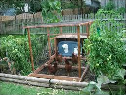 Small Picture Backyards Excellent Small Vegetable Garden Ideas Backyard Beauty