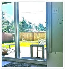 sliding glass dog door door sliding glass dog insert reviews electronic sliding glass dog door