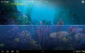 Fish Tank Live Wallpaper 10 Apk Download Android