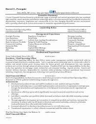 Ceo Resume Sample Fresh 51 Fresh Ceo Resume Sample Doc Fresh Resume ...