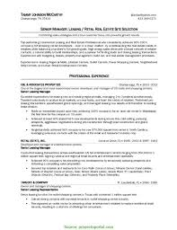 Realtor Job Description Top Real Estate Job Description For Resume Wonderful Real Estate 4