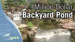 Backyard Ponds Million Dollar Backyard Pond Youtube