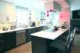 Average Cost Kitchen Remodel Babygodzilla Co