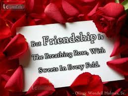Image result for friendship is a relief to wound