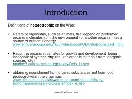 Heterotrophic Nutrition Presentation Health And Disease Sliderbase