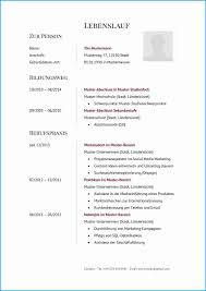 8 Lebenslauf Muster 2015 Rechnungsvorlage