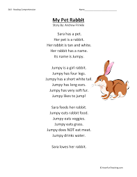 comprehension worksheet my pet rabbit reading comprehension worksheet my pet rabbit