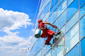 Image result for hire professional window cleaning services