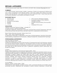 Child Care Resume Sample Magnificent Daycare Assistant Director Resume Sample Unique Sample Resume For