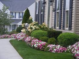 Small Picture Backyard amusing front yard flower beds breathtaking green