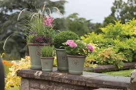 510 Best Winter Containers Images On Pinterest  Christmas Container Garden Ideas Uk