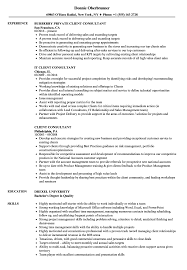 Client Consultant Resume Samples Velvet Jobs