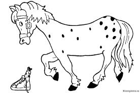 Paard Van Sinterklaas Kleurplaten Kleurplateneu