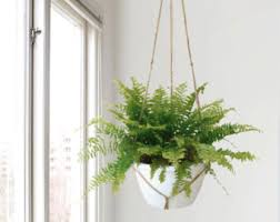 Extra large natural beige macrame plant hanger for hanging planters | Raw  jute twine pot holder
