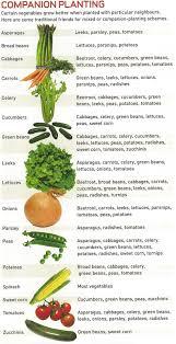 Vegetable Planting Companions Chart Vegetable Garden Companion Planting Companion Planting Chart