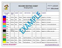 Whelping Chart Puppies In Bloom Record Keeping Charts For Breeders With 8 Inch Puppy Id Bands Included