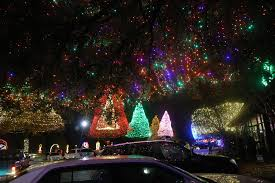Swan Lake Sumter Sc Christmas Lights Flipping The Switch On At Sumters Swan Lake For The