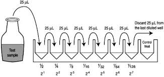 Appendix 4 Two Fold Serial Dilutions