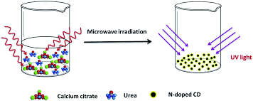 a green heterogeneous synthesis of n doped carbon dots and their 5 schematic diagram of the formation mechanism of n doped cds