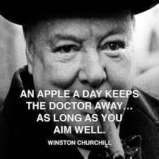 best winston churchill images winston churchill  winston churchill apple doctor more