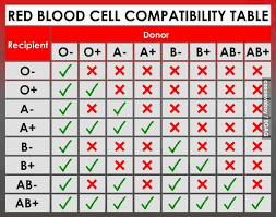 Blood Compatibility Chart Nursing Labs Nursing Lab Values