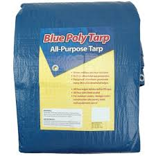 Sigman 10 Ft X 12 Ft Blue Tarp
